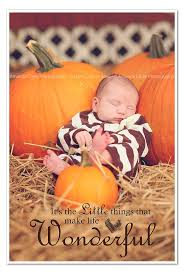 Free Pumpkin Patch Fort Collins by 29 Best Pumpkin Patch Images On Pinterest Fall Pictures Fall