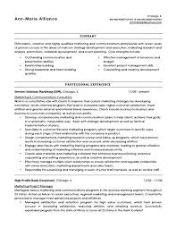 Resume Headline For Experienced The Best Examples Job Seeker In Sales Ideas Of Sample