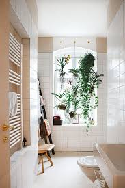 Plants In Bathrooms Ideas by 137 Best Plant Design Images On Pinterest Gardening Landscaping
