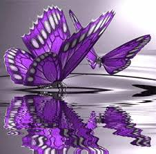 The first butterfly that es is purple