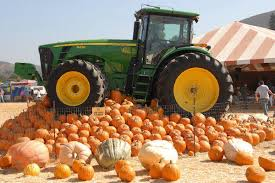 Shawns Pumpkin Patch Los Angeles Ca by Dola U0027s Guide To Pumpkin Patches U0026 Hayrides