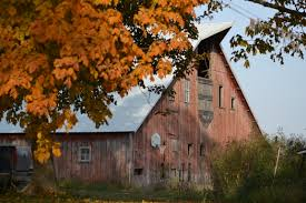 Iowa In Fall | Eden Hills Xlentcrap Barns Flowers Stuff 2009 In Vermont The Fall Stock Photo Royalty Free Image A New England Barn Fall Foliage Sigh Farms And Fecyrmbarnactorewmailpouchfallfoliagetrees Is A Perfect Time For Drive To See National Barn Five Converted Rent This Itll Make You See Red Or Not Warming Could Dull Tree Dairy Cows Grazing Pasture With Dairy Barns Michigan Churches Mills Covered Mike Of Nipmoose Engagement Beauty Pa Leela Fish Rustic Winter Scene Themes Summer Houses Decorations