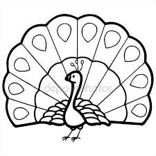 Peacock Clipart Black And White Pencil In Color