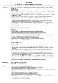Download Activity Director Resume Sample As Image File