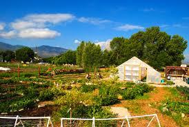 Pumpkin Patches Near Colorado Springs by Guidestone Colorado We Grow Farmers Home