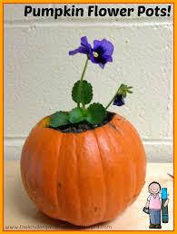 Spookley The Square Pumpkin Book Amazon by A Kindergarten Smorgasboard Schedulin Sunday The Kindergarten