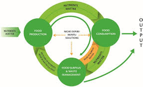 Eds Seafood Shed Mobile by Sustainability Free Full Text Transition Towards Circular