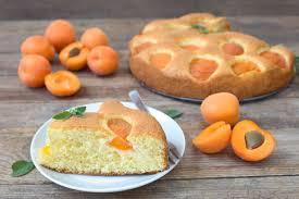 aprikosen kuchen wie bei oma mein dolcevita de