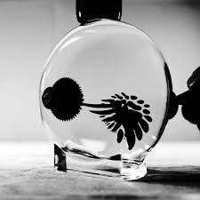 15 best ferrofluid images on pinterest magnets sculptures and neon