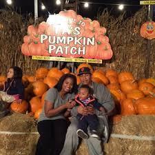 Best Pumpkin Patch Torrance by Pa U0027s Pumpkin Patch 297 Photos U0026 201 Reviews Fairgrounds
