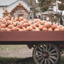 Best Pumpkin Picking Bergen County Nj by Bergen County Nj Things To Do Restaurants Family Fun And More