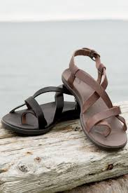 Tin Shed Portland Baby Beluga Recipe by 47 Best Shoes Images On Pinterest Shoes Chaco Sandals And