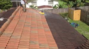 how to clean tile roof