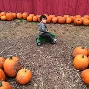 Bengtsons Pumpkin Patch Homer Glen Il by Konow U0027s Corn Maze 85 Photos U0026 47 Reviews Attraction Farms