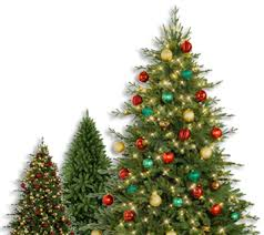 Lifelike Artificial Christmas Trees Canada by The World U0027s Finest Artificial Christmas Trees Tree Classics