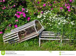 Decorative Wooden Lobster Trap by Floral Lobster Traps Stock Photo Image 39813971