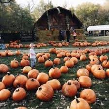 Pumpkin Patch Church Tallahassee by Even Though I Do Love Summer I Am So Ready For Fall Falling