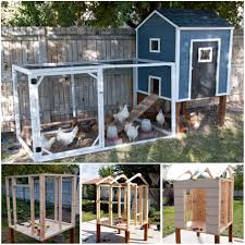 10+ Backyard DIY Chicken Coop Plans And Tutorials   BeesDIY.com Best 25 Chicken Runs Ideas On Pinterest Pen Wonderful Diy Recycled Coops Instock Sale Ready To Ship Buy Amish Boomer George Deluxe 4 Coop With Run Hayneedle Maintenance Howtos Saloon Backyard Images Collections Hd For Gadget The Chick Chickens Predators Myth Of Supervised Runz Context Chicken Coop Canada Dirt Floor In Run Backyard Ultimate By Infinite Cedar Backyard Coup 28 Images File