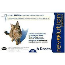 heartgard for cats revolution for cats 5 1 15 lbs blue 6 pack 1 dose free