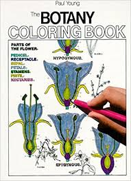 Amazon The Botany Coloring Book 9780064603027 Paul Young Jacquelyn Giuffre Books