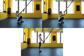Trx Ceiling Mount Weight Limit by Suspension Trainer Healthstyles Exercise Equipment