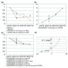 Molecular Role Of GATA Binding Protein 4 GATA4 In Hyperglycemia