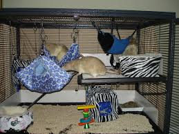 cages and bedding rockabye rattery
