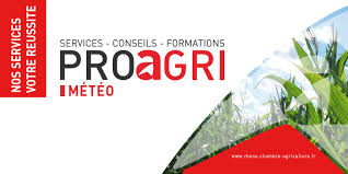offre emploi chambre agriculture accueil69 synagri com