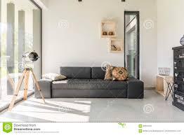 wohnzimmer mit schwarzen möbeln stockbild bild haus