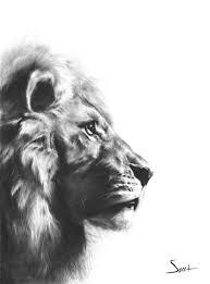 Drawn Lion Artwork Black And White 13