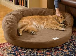 orthopedic dog beds super absorbent bolster dog bed with memory