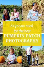 South Boulder Pumpkin Patch by 84 Best Halloween Photos With Kids Images On Pinterest