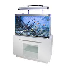 bon coin aquarium occasion meuble aquarium occasion le bon coin