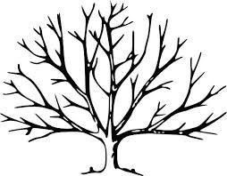winter tree coloring page tree template no leaves tree with no leaves clip art vector clip