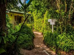 100 Tree Houses Maleny 584 Montville Road Balmoral Ridge QLD 4552