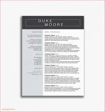 Two Column Resume Templates Professional 2 Column Resume Template ... Two Column Resume Templates Contemporary Template Uncategorized Word New Picturexcel 3 Columns Unique Stock Notes 15 To Download Free Included 002 Resumee Cv Free 25 Microsoft 2007 Professional Sme Simple Twocolumn Resumgocom 2 Letter Words With You 39 One Page Rsum Rumes By Tracey Cool Photography Two Column Cv Mplate Word Sazakmouldingsco