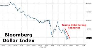 trump wants to end the debt ceiling schumer agrees zero hedge