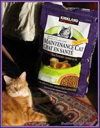 organic cat food kirkland signature brand cat food so far so as many flickr