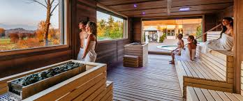 the sauna advisor eos sauna