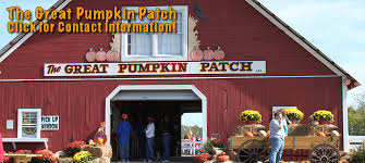 Pumpkin Patch Alabama Clanton the great pumpkin patch hayden al