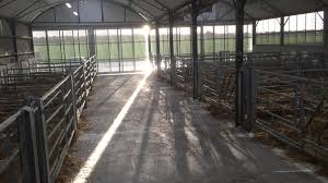 Calving Facilities At Teagasc Grange - YouTube Around The Farm Scissors Creek Cattle Company The Beutler Family Bench Design Hay Barn Plans Shed Heifer Development Way View Onduty Horse Csavvycom We Know Working Horses Katefairlie Kate Fairlie Kims County Line Cribs Aka Sheds Enduragate Setup Demstration For Calving Youtube Portable Calving Beef Facilities Pinterest Barn 332014 Calving2014 January 2014 Life On A Bc Ranch Slate Architecture Boots Heels Renovated Area