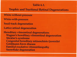 Trophic And Tractional Retinal Degenerations