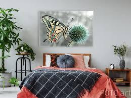 schlafzimmer mit foto des schmetterlinges auf leinwand
