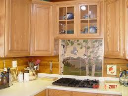 houzz kitchen backsplash tile blue cabinets soapstone countertop