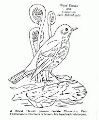 Category Nature Coloring Book Pages Page 0