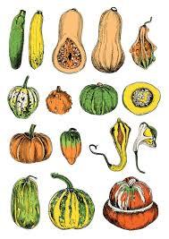 565x800 384 best Ve ables illustrations images Veggies