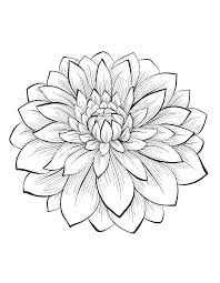 Free Flower Coloring Pages For Adults Flowers Printable And