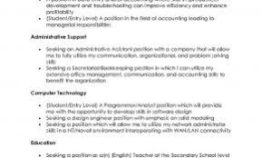 Resume Objective Statement Examples For Information Technology Awesome Accounting Weoinnovate