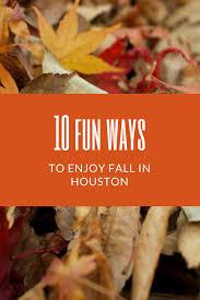 Free Pumpkin Patch Houston Tx by 10 Fun Ways To Enjoy Fall Around Houston