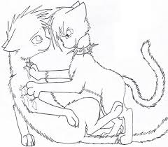 Warrior Cats Scourge Coloring Pages Warriors Book 7 By